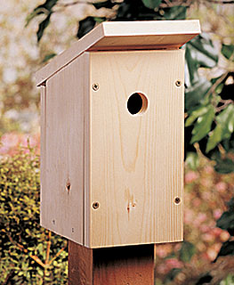 simple bird house plans