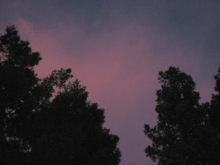 IMG_1215-pink-skyc