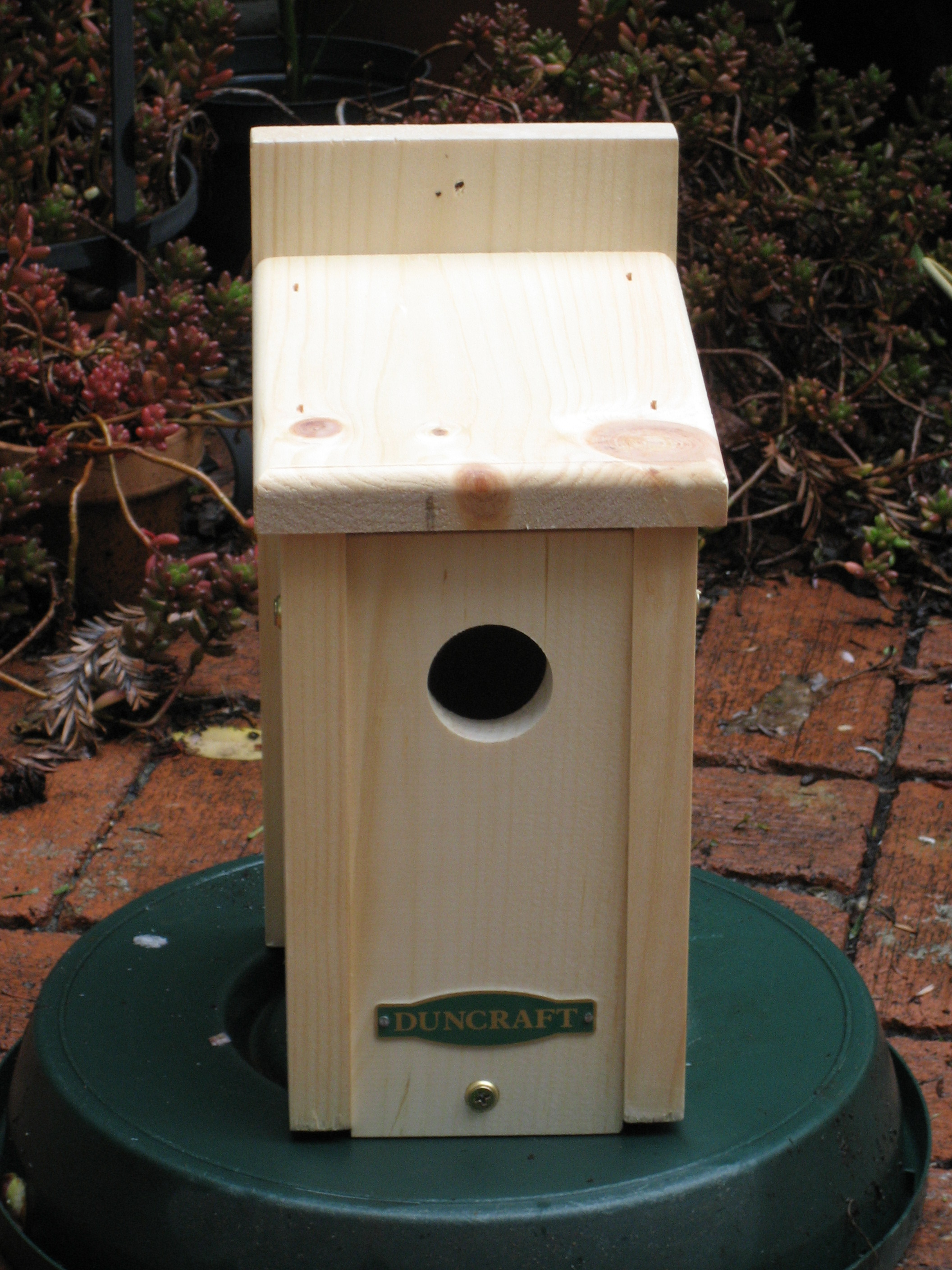 Protect your bird house from predators chickadees for Simple diy birdhouse plans